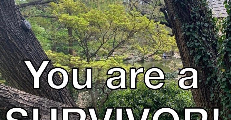 Survivor not victim PlantingMe.com
