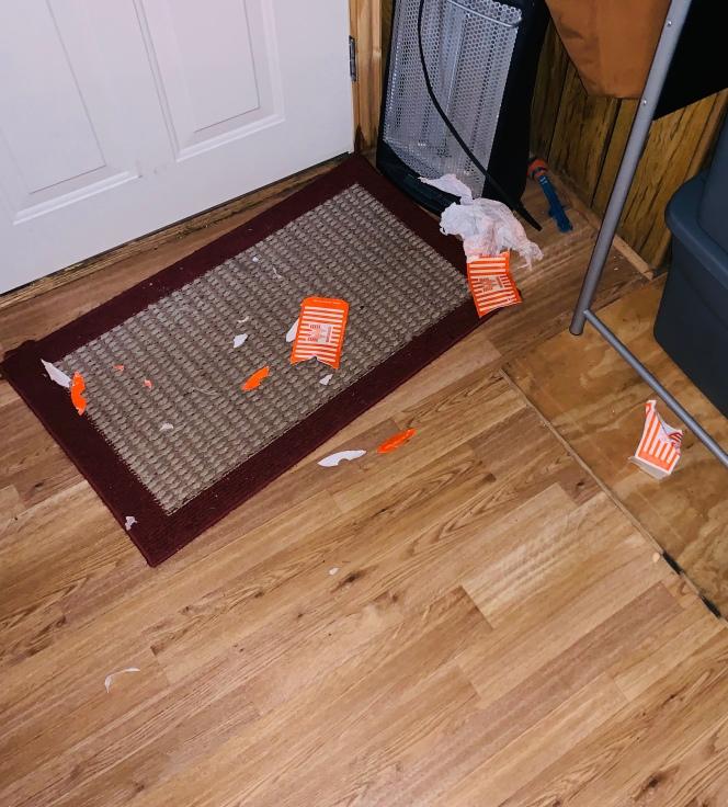 Sandy killed the terrifying paper PlantingMe.com